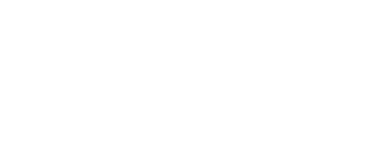 PvL Car Logistics white logo